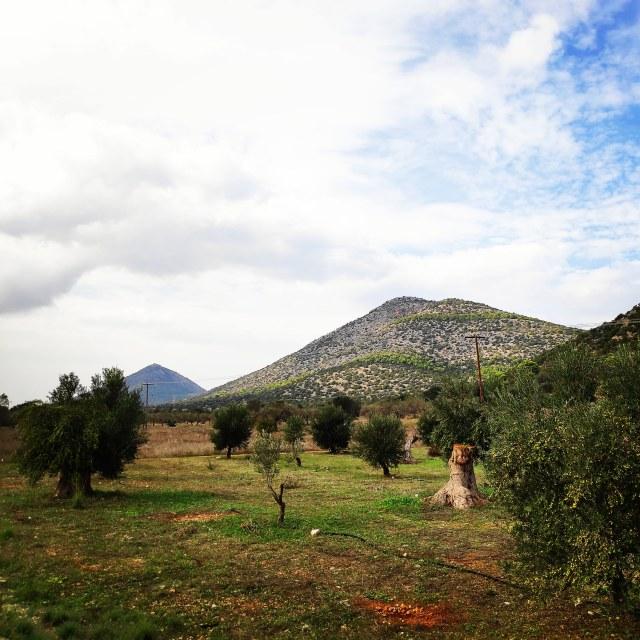 Hiking_Ermionida_Ermioni_Asprovouni_Profitis_Elias_165419_324