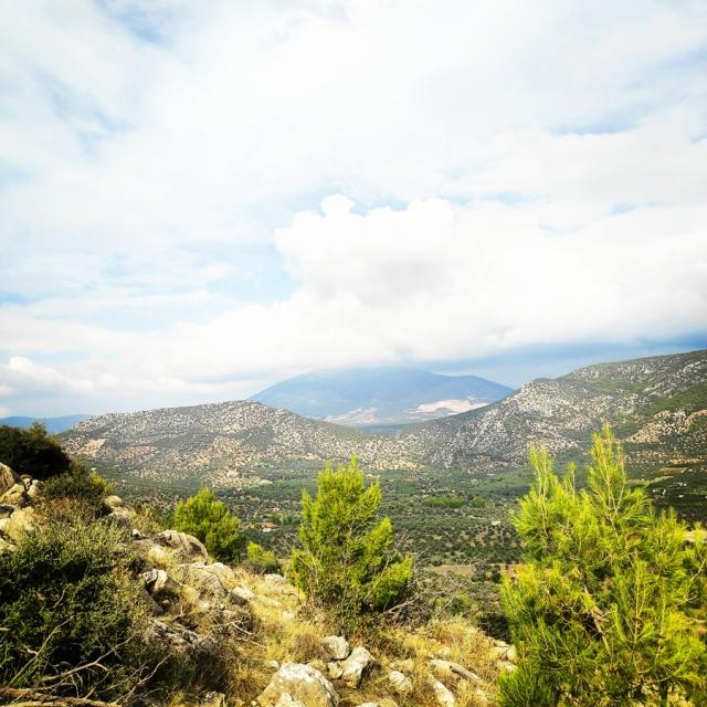 Hiking_Ermionida_Ermioni_Asprovouni_Profitis_Elias_165542_773