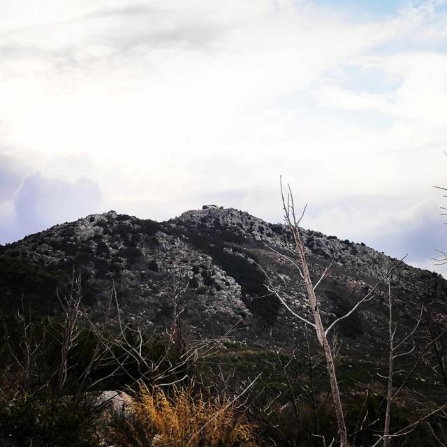 Hiking_Ermionida_Ermioni_Asprovouni_Profitis_Elias_165833_301