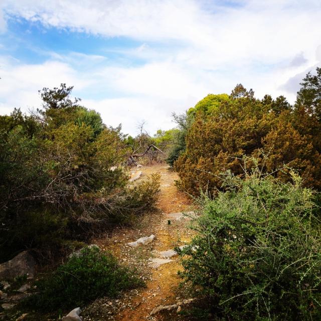 Hiking_Ermionida_Ermioni_Asprovouni_Profitis_Elias_170103_568