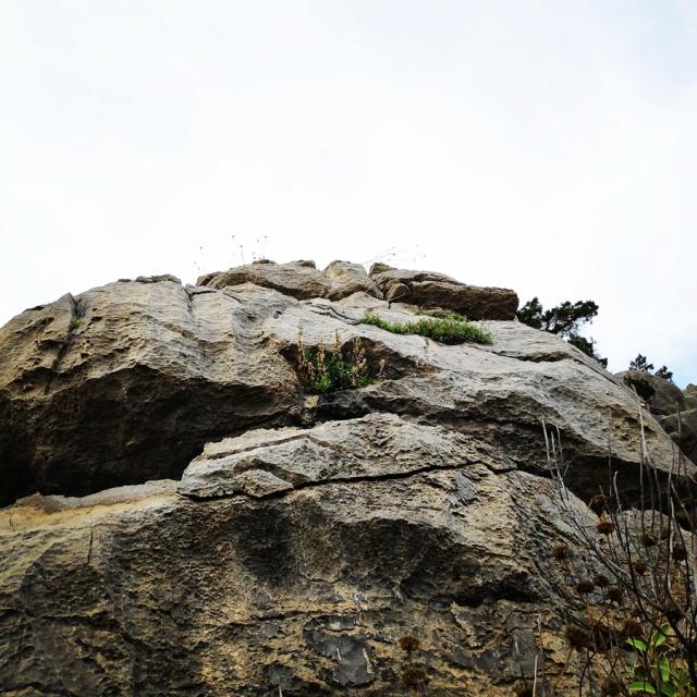 Hiking_Ermionida_Ermioni_Asprovouni_Profitis_Elias_170204_893