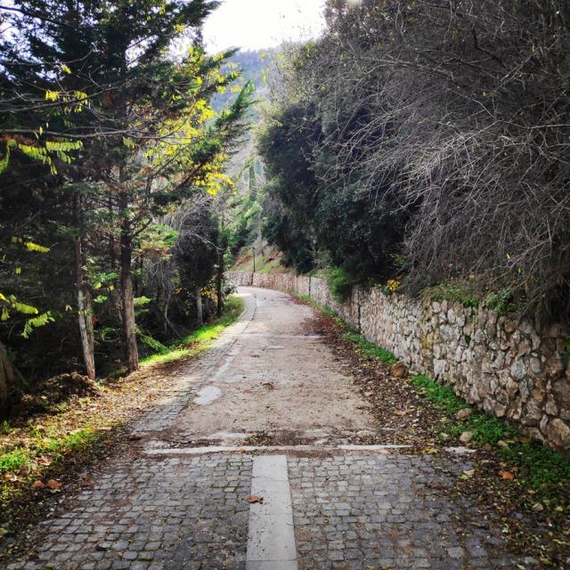 Hiking_Gerania_195709_042