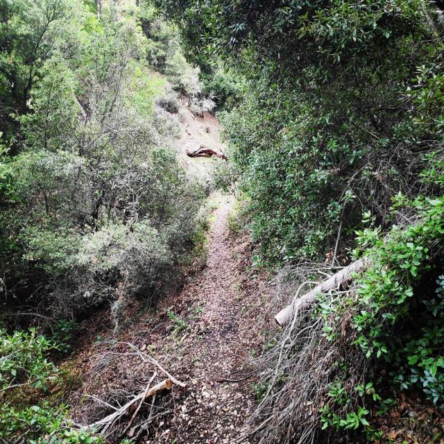 Hiking_Gerania_195832_582