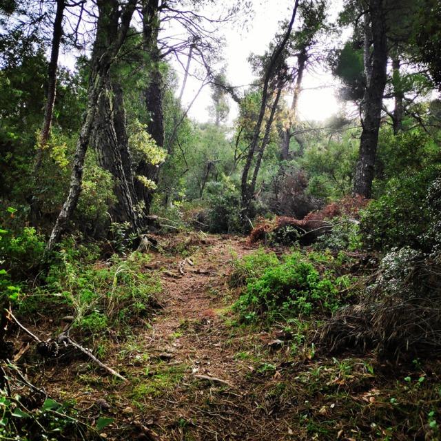 Hiking_Gerania_195859_501
