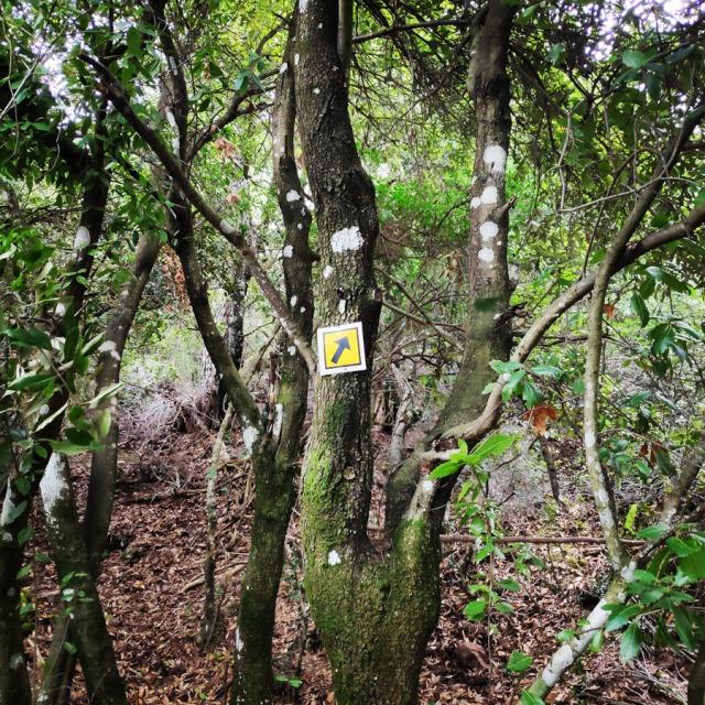 Hiking_Gerania_195920_544