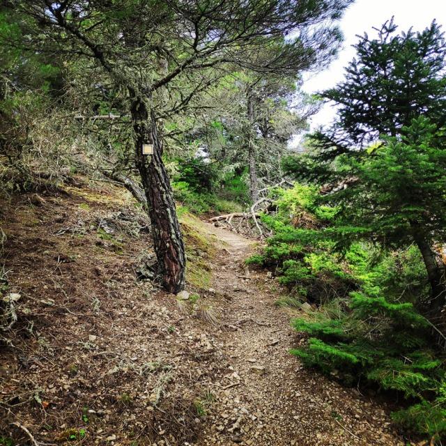 Hiking_Gerania_195950_106