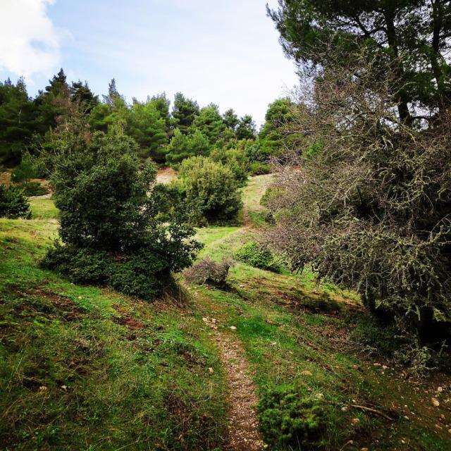 Hiking_Gerania_200020_282