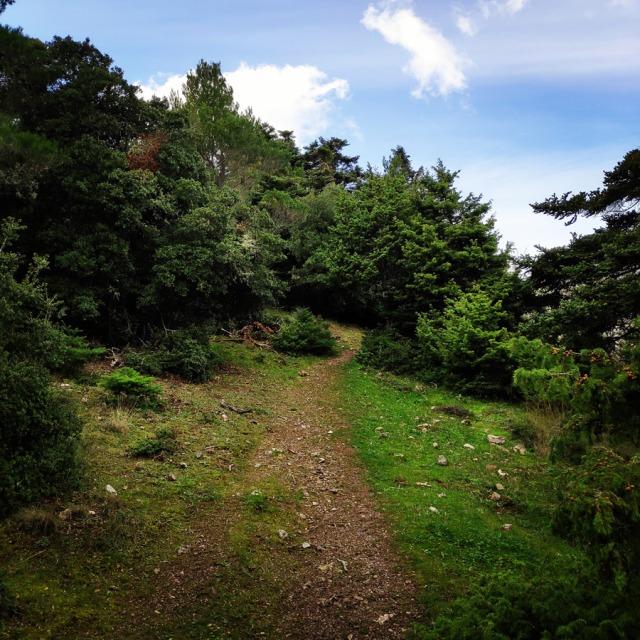 Hiking_Gerania_200313_970