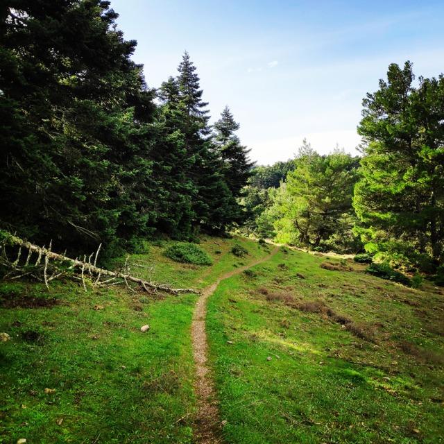 Hiking_Gerania_200412_244