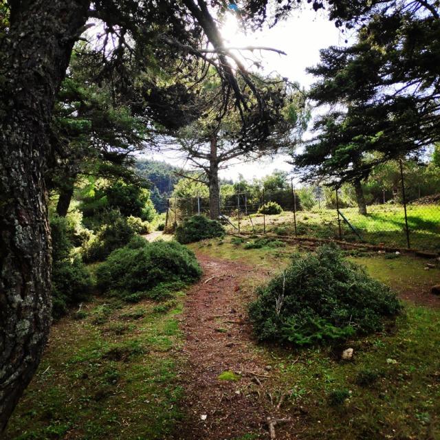 Hiking_Gerania_200431_920
