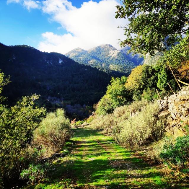 Hiking_Parnonas_Greece_203206_284