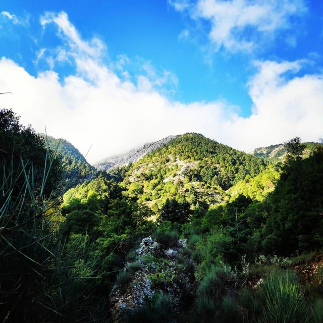 Hiking_Parnonas_Greece_203346_901