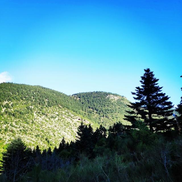 Hiking_Parnonas_Greece_203443_777