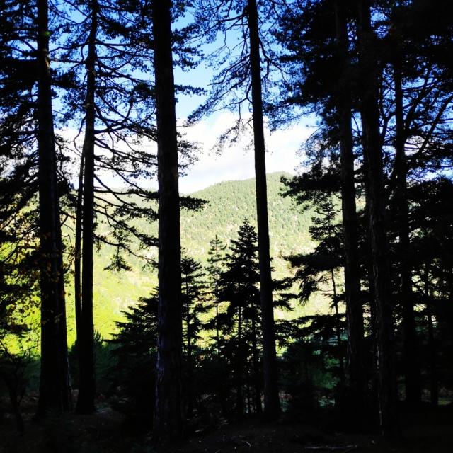 Hiking_Parnonas_Greece_203532_073