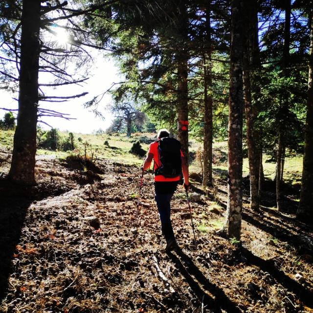 Hiking_Parnonas_Greece_203724_080