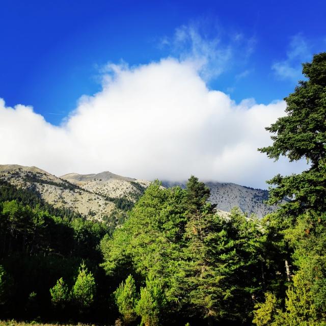 Hiking_Parnonas_Greece_203754_377