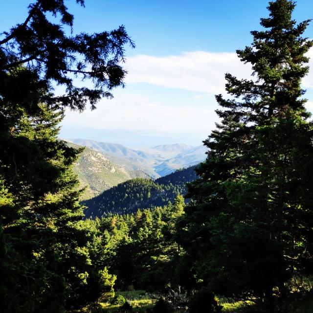 Hiking_Parnonas_Greece_210201_563