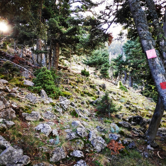 Hiking_Parnonas_Greece_210249_052