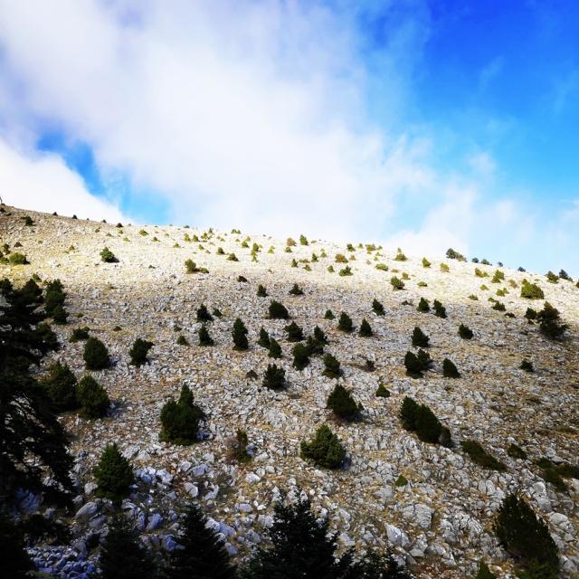 Hiking_Parnonas_Greece_210418_062