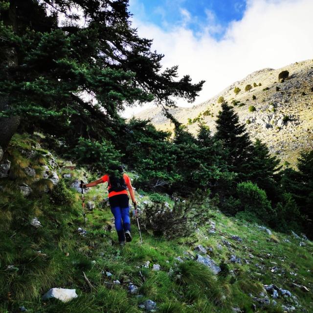 Hiking_Parnonas_Greece_210435_372