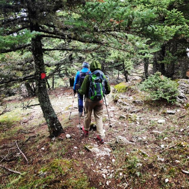 Hiking_Parnonas_Greece_211800_908
