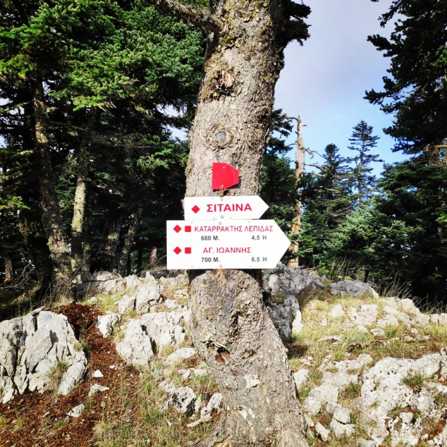Hiking_Parnonas_Greece_211813_908