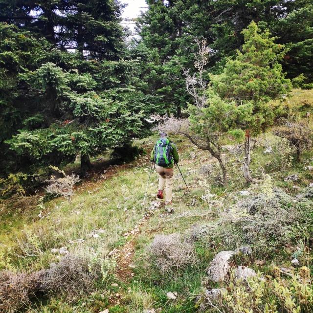 Hiking_Parnonas_Greece_211942_089