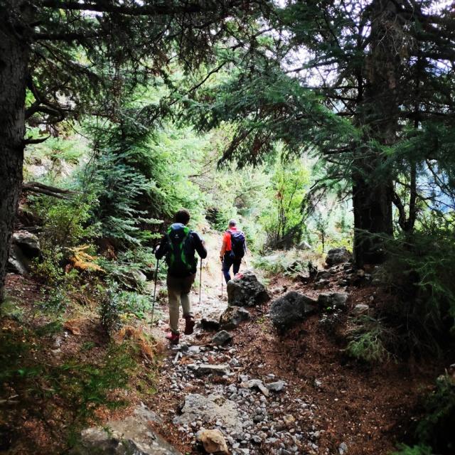 Hiking_Parnonas_Greece_212023_841