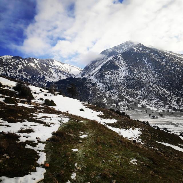 Hiking_Climbing_Kyllini_Ziria_Profitis_Elias_Peak_103244_534