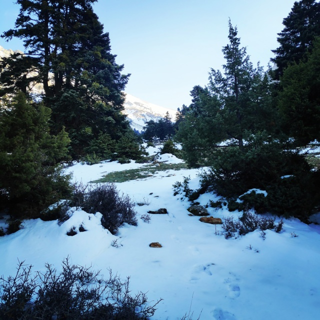 Hiking_Climbing_Kyllini_Ziria_Profitis_Elias_Peak_104521_970
