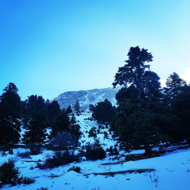 Hiking_Climbing_Kyllini_Ziria_Profitis_Elias_Peak_104619_032
