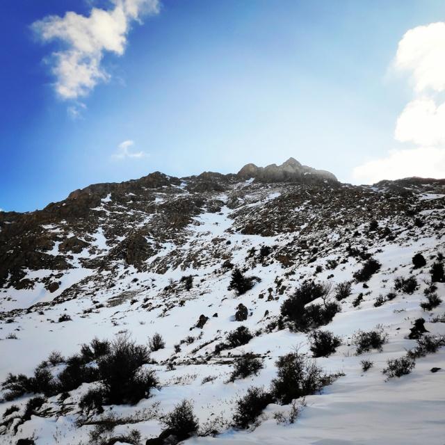 Hiking_Climbing_Kyllini_Ziria_Profitis_Elias_Peak_104754_339