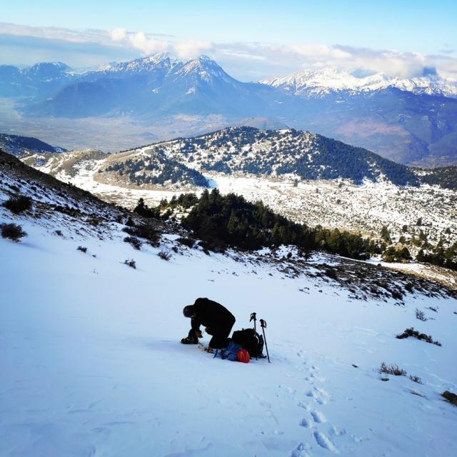 Hiking_Climbing_Kyllini_Ziria_Profitis_Elias_Peak_104908_971