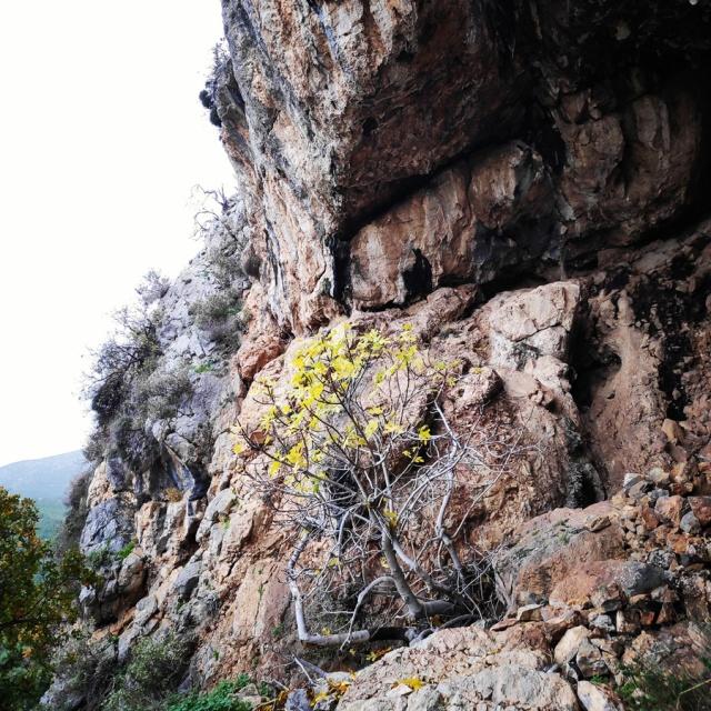 DryTooling_Athens_Epos_Fylis_Rizos_Cave_092047_121
