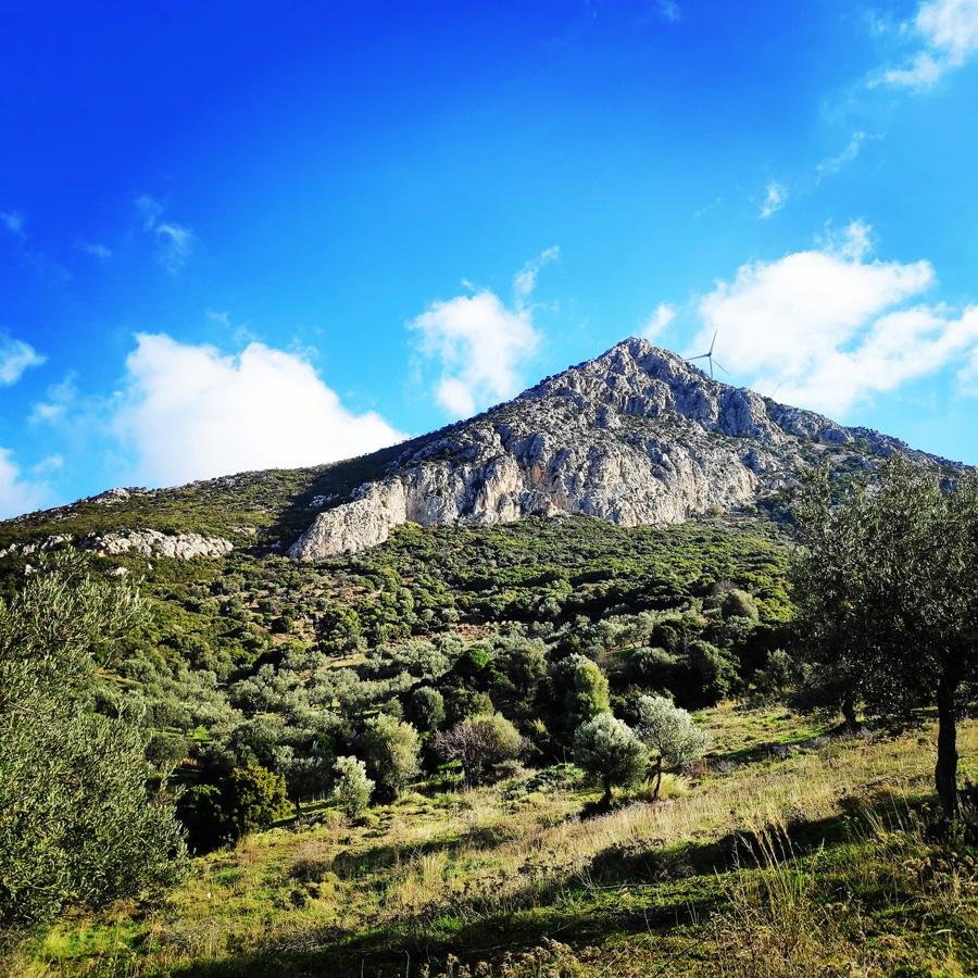 South-West_Ridge_Ortholithi_Mountain_161033_798_b