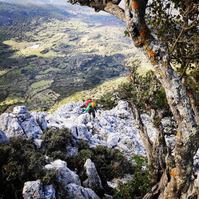 South-West_Ridge_Ortholithi_Mountain_162733_242