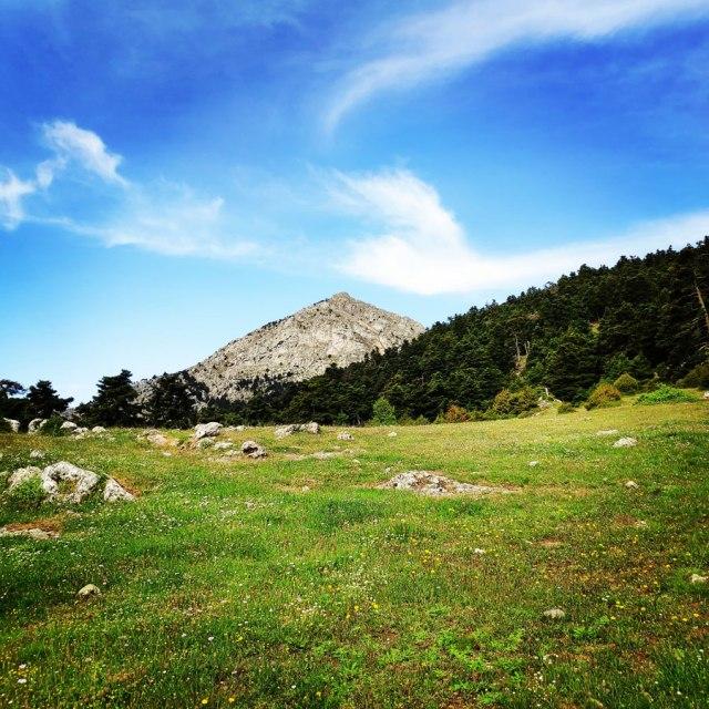 Artemisio_Mountain_Hiking_170949_661