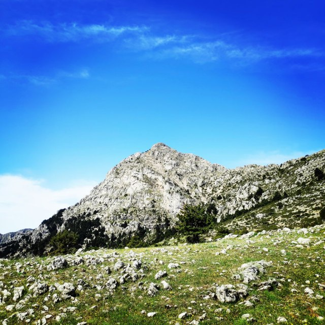Artemisio_Mountain_Hiking_171047_493