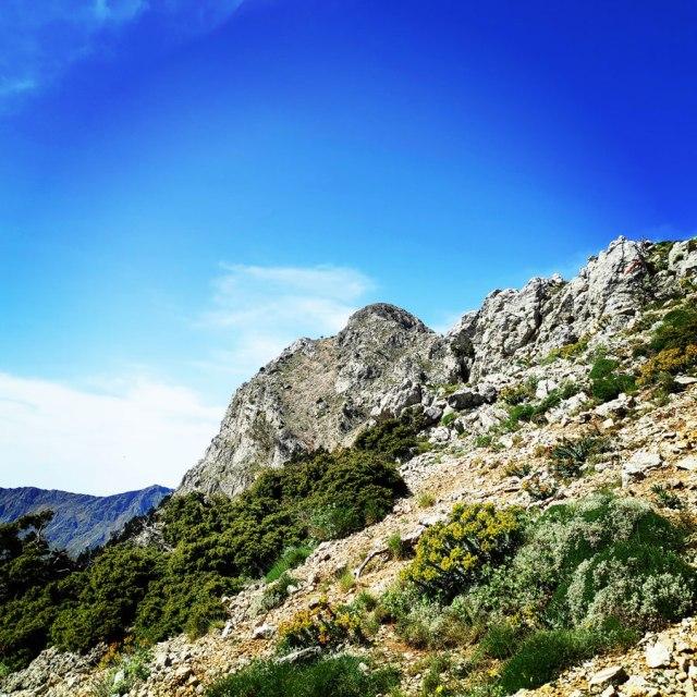 Artemisio_Mountain_Hiking_171115_123