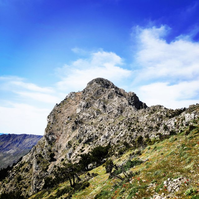 Artemisio_Mountain_Hiking_171136_844