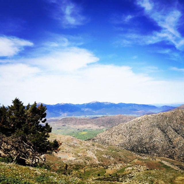 Artemisio_Mountain_Hiking_171157_512