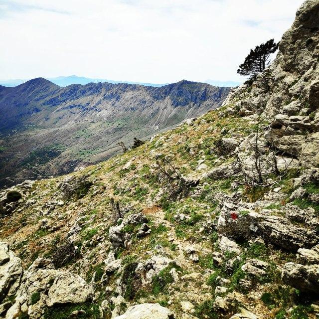 Artemisio_Mountain_Hiking_171527_454
