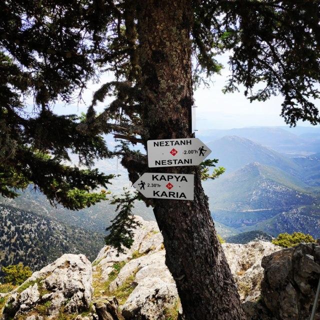 Artemisio_Mountain_Hiking_171606_237