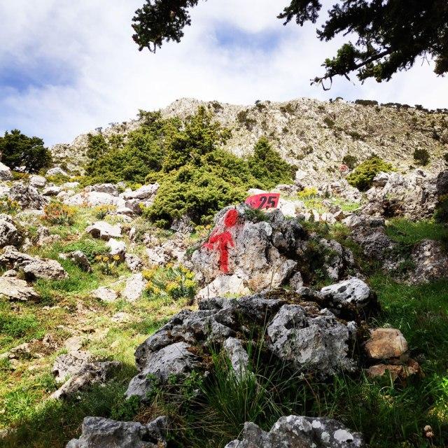 Artemisio_Mountain_Hiking_171622_932