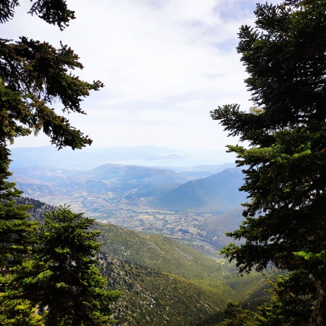 Artemisio_Mountain_Hiking_171646_123