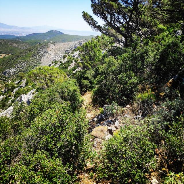 Climbing_HornedOwl_Ridge_Kopsi_Boufou_κοψη_Μπουφου_145946_292