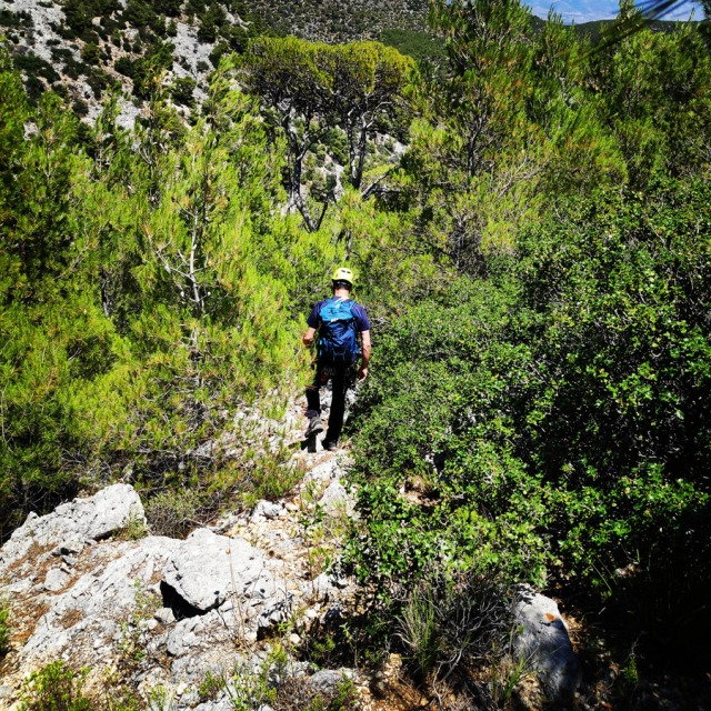 Climbing_HornedOwl_Ridge_Kopsi_Boufou_κοψη_Μπουφου_150021_923