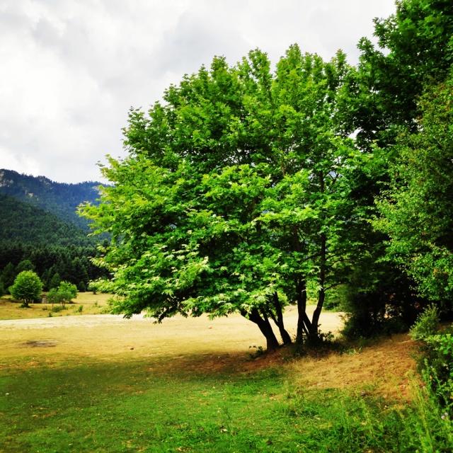 Lake_Doxa_Wild_Camping_101743_998