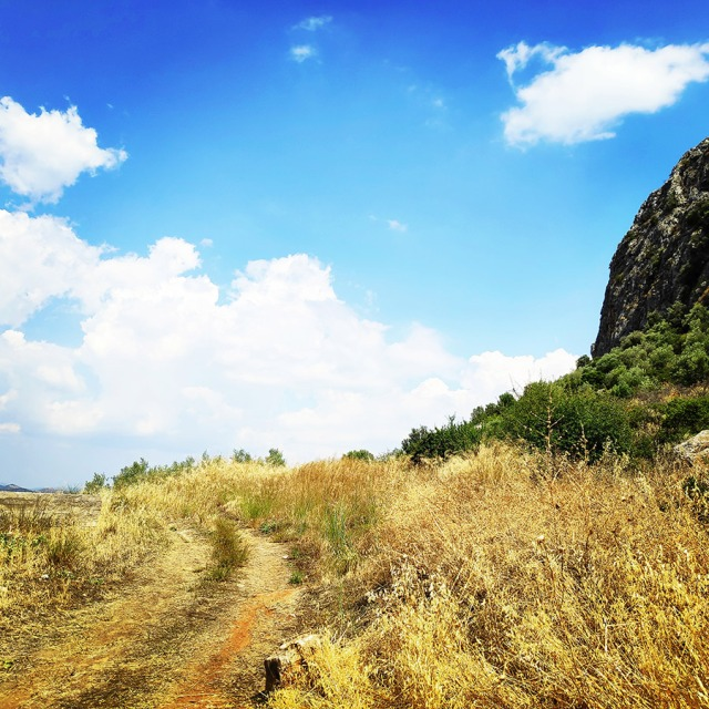 Climbing_Diaberis_Pothos_Profitis_Elias_Asini_163047_925