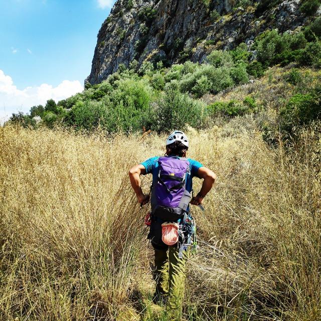 Climbing_Diaberis_Pothos_Profitis_Elias_Asini_163102_510